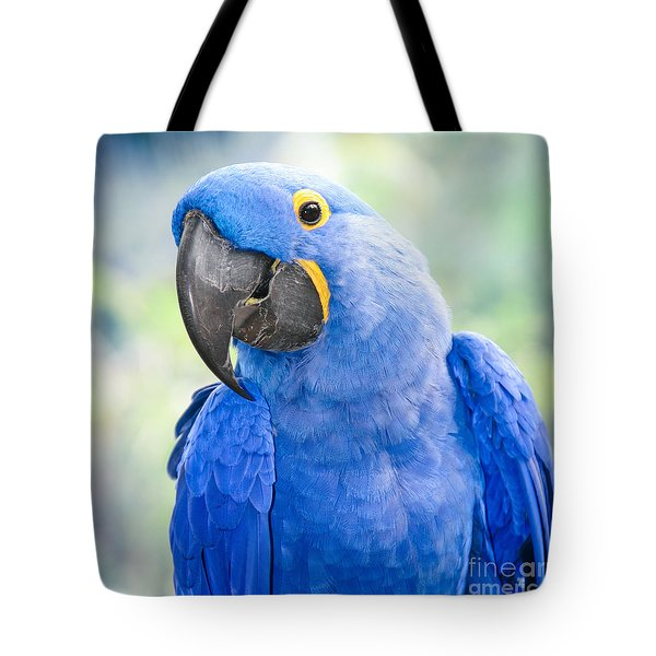 Beauty Is An Enchanted Soul Tote Bag