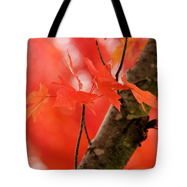 Beauty Of Red Tote Bag
