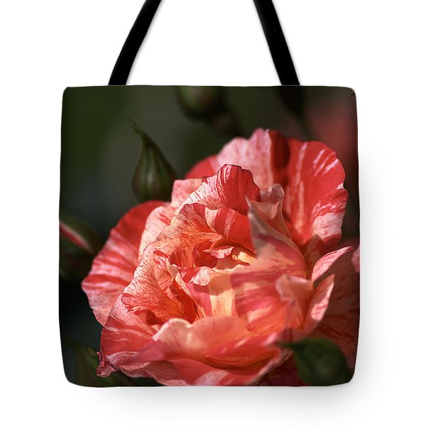 Tote Bag featuring the photograph Beauty Of Rose by Joy Watson