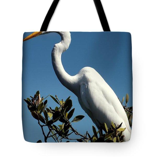 Beauty Of Sanibel Tote Bag by Karen Wiles