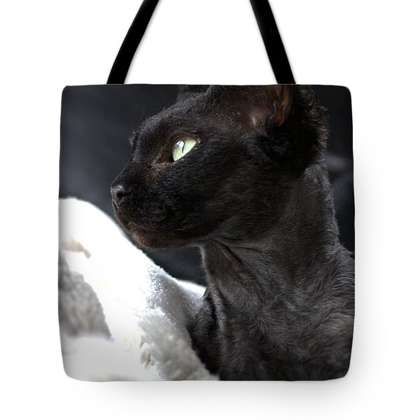 Beauty Of The Rex Cat Tote Bag