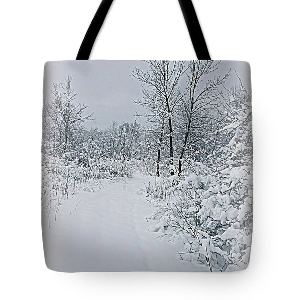 Beauty Of Winter Tote Bag by Kay Novy
