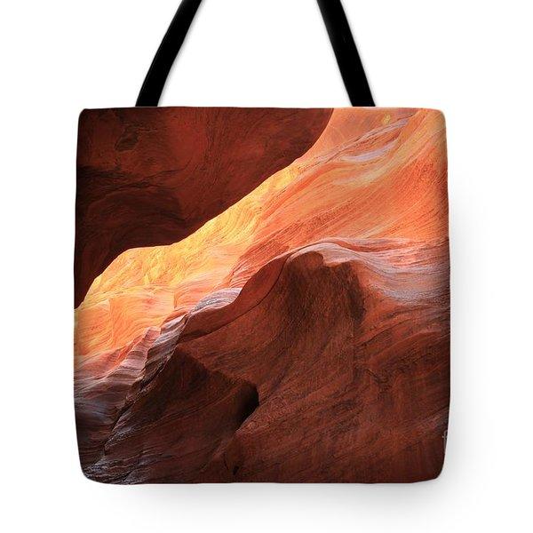 Beauty Overhead Tote Bag