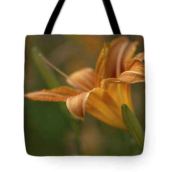 Beauty - Tiger Lily Art Print Tote Bag by Jane Eleanor Nicholas