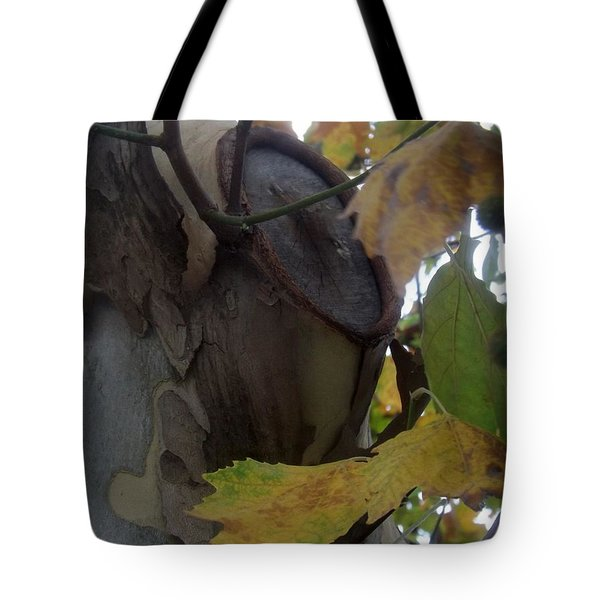 Beauty With Age Tote Bag
