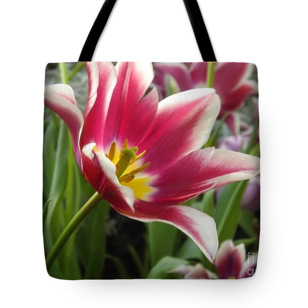 Beauty Within Tote Bag by Lingfai Leung
