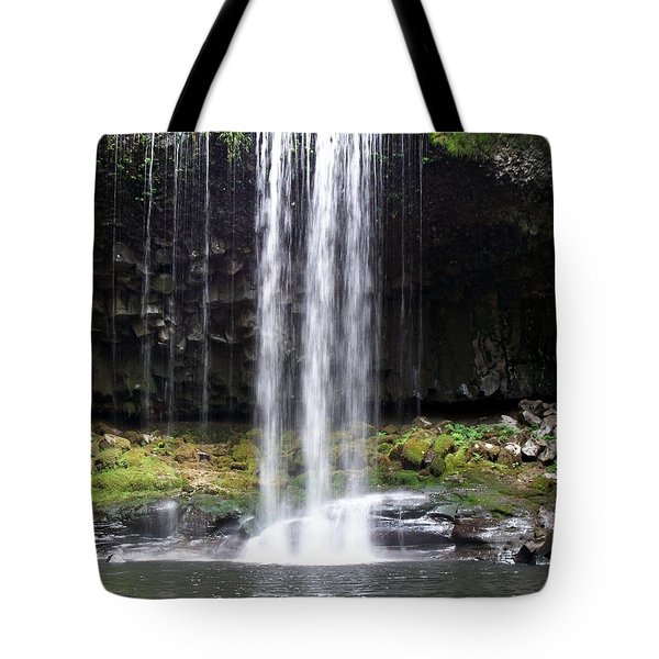Beaver Falls Tote Bag by Chalet Roome-Rigdon