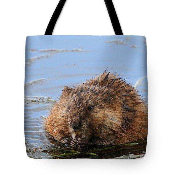 Beaver Portrait Tote Bag