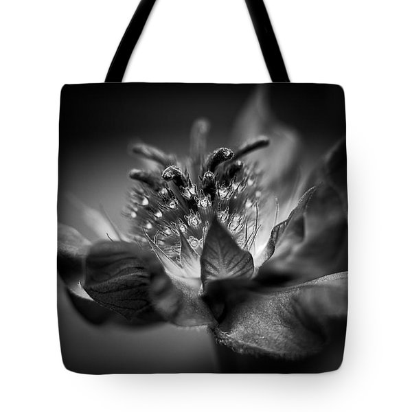 Bee Balm 10 Tote Bag