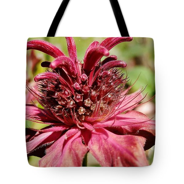 Bee Balm Details Tote Bag