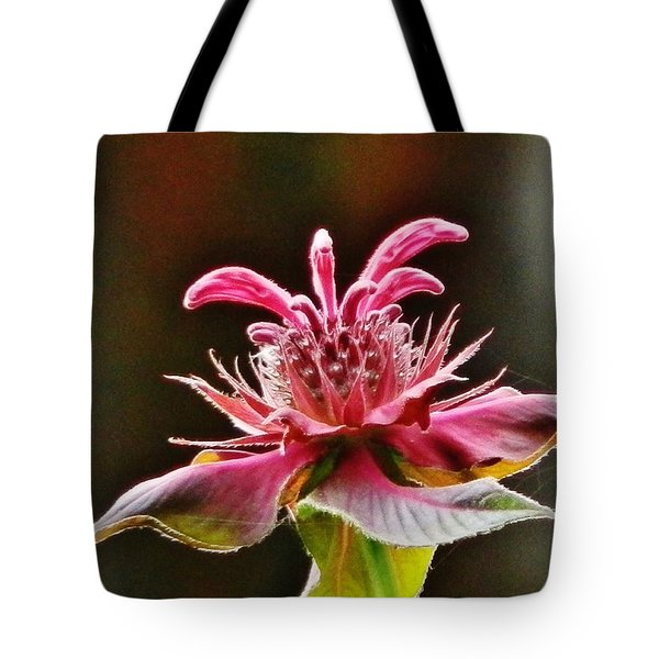 Tote Bag featuring the photograph Bee Balm's Beauty by VLee Watson