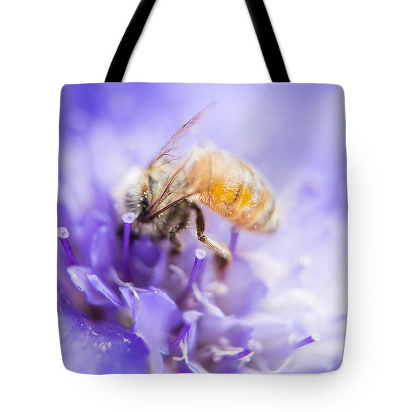 Bee Dream Tote Bag by Caitlyn  Grasso