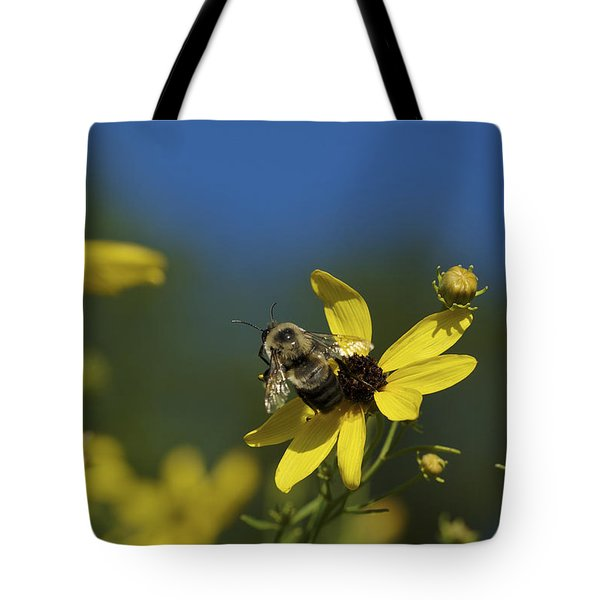 Tote Bag featuring the photograph Bee Good - Bee On Yellow Wildflowers by Jane Eleanor Nicholas