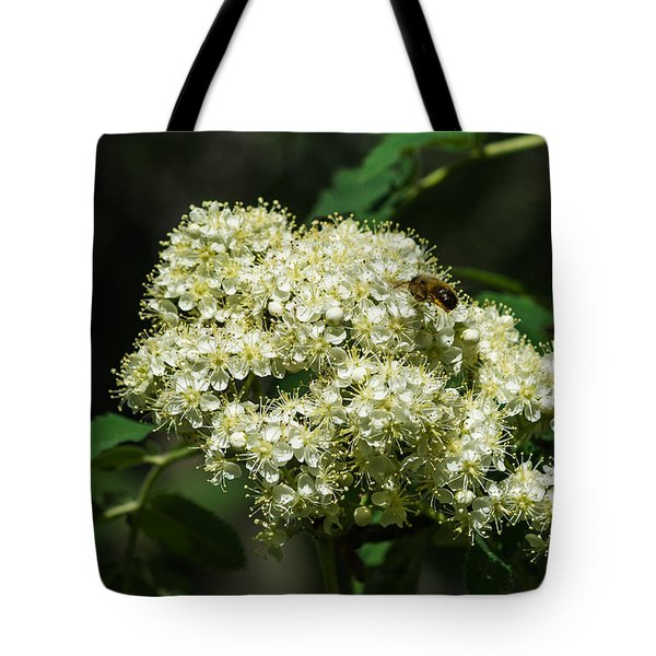 Bee Hovering Over Rowan Truss - Featured 3 Tote Bag by Alexander Senin