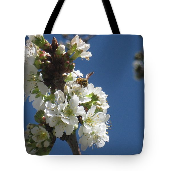 Bee On Cherry Blossoms Tote Bag