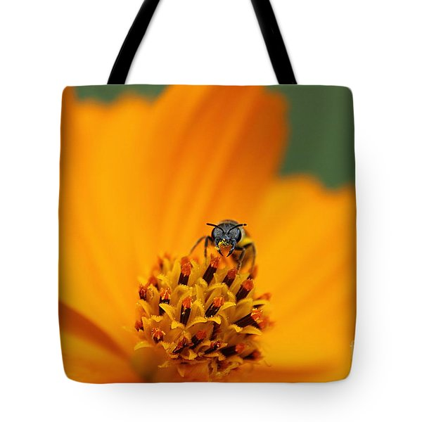 Tote Bag featuring the photograph Bee On Cosmo by Lisa L Silva