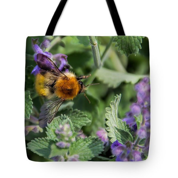 Tote Bag featuring the photograph Bee Too by David Gleeson