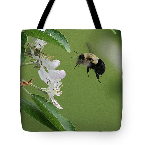 Bee With Apple Blossoms Tote Bag
