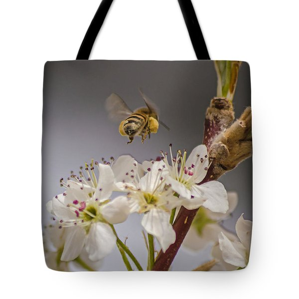 Bee Working The Bradford Pear 2 Tote Bag