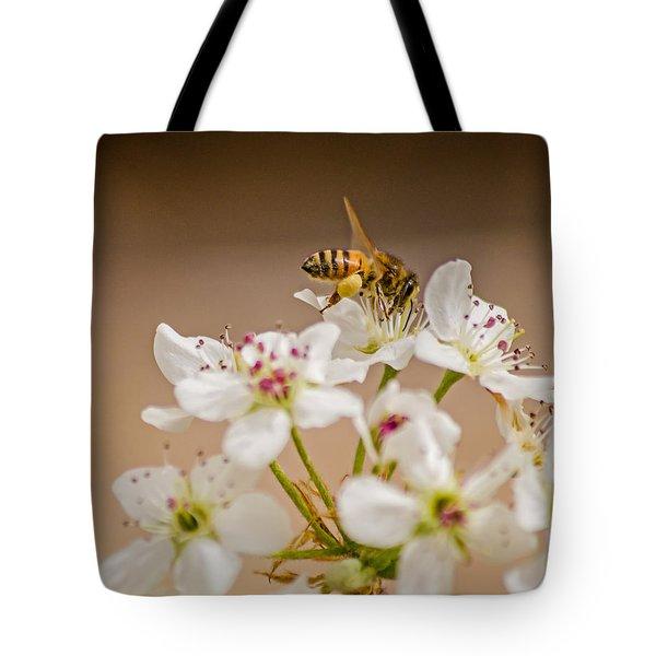 Bee Working The Bradford Pear 4 Tote Bag