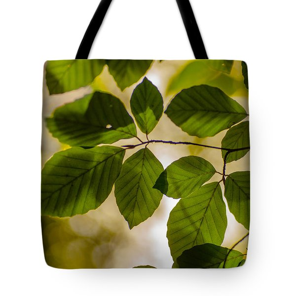 Beech Leaves And Bokeh Tote Bag by Jan Bickerton