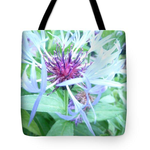 Bee's Balm Tote Bag