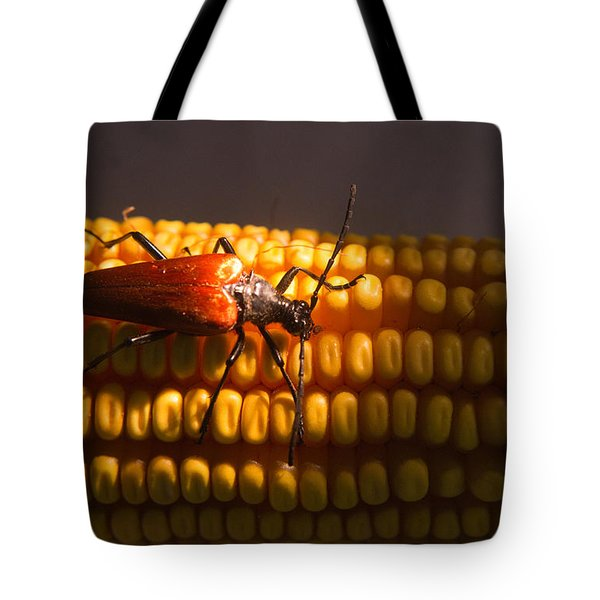 Beetle On Corn Ear Tote Bag