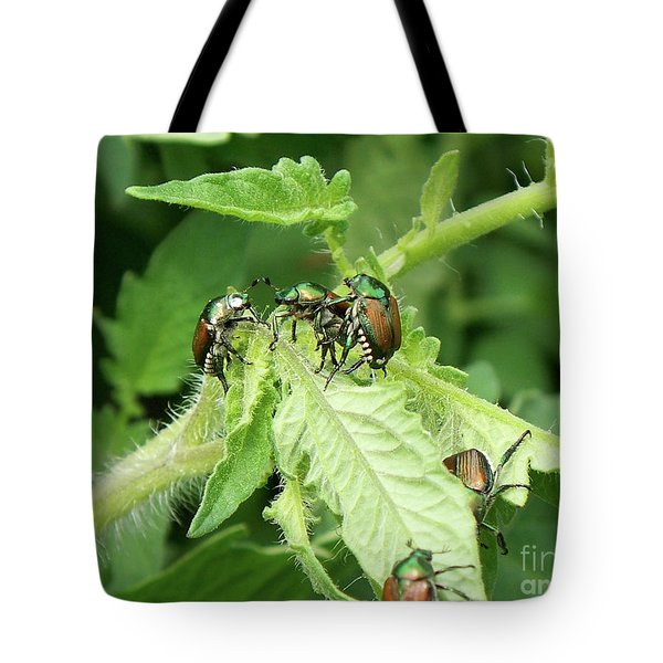 Tote Bag featuring the photograph Beetle Posse by Thomas Woolworth
