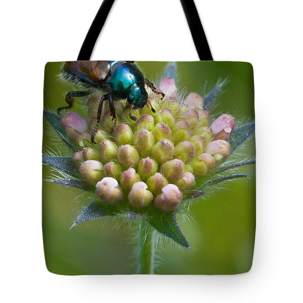 Beetle Sitting On Flower Tote Bag