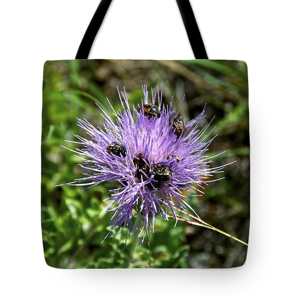 Tote Bag featuring the photograph Beetlemania by Dee Dee  Whittle