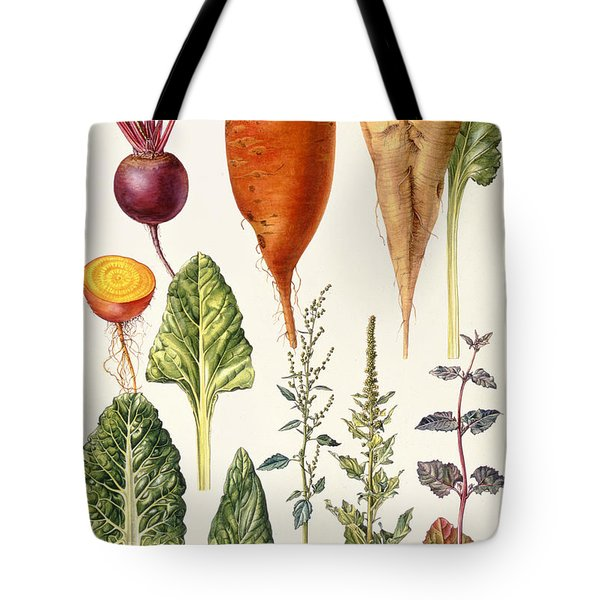 Beetroot And Other Vegetables Wc Tote Bag