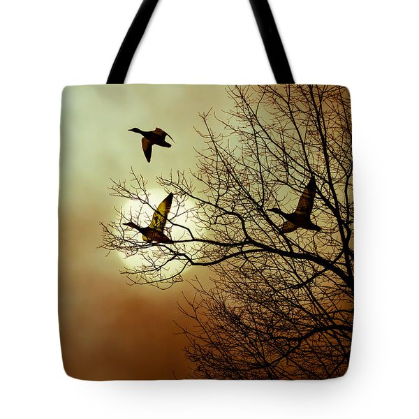 Before A Winter Sky Tote Bag by Bob Orsillo