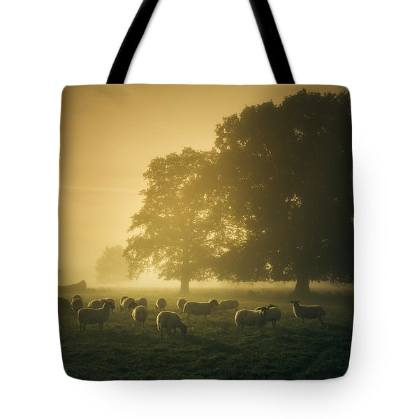Before Dawn Gathering Tote Bag by Chris Fletcher