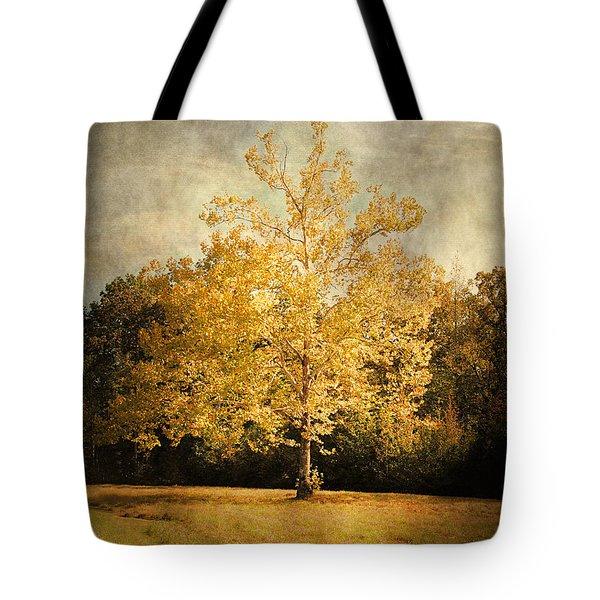 Beginning Of Autumn Tote Bag by Jai Johnson