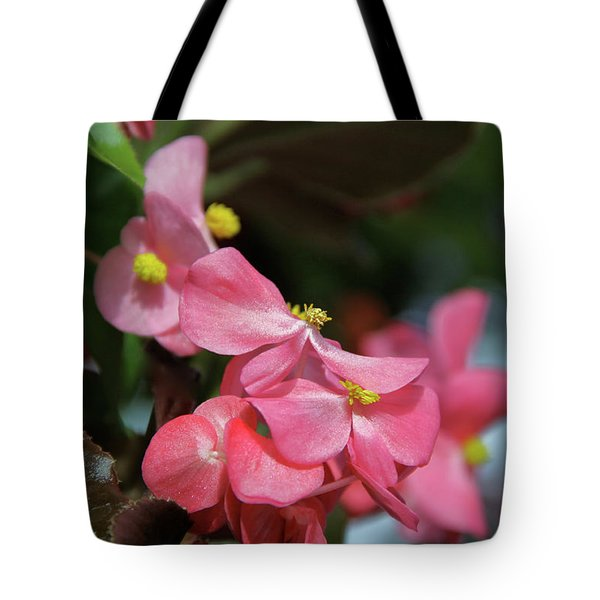 Begonia Beauty Tote Bag by Ed  Riche