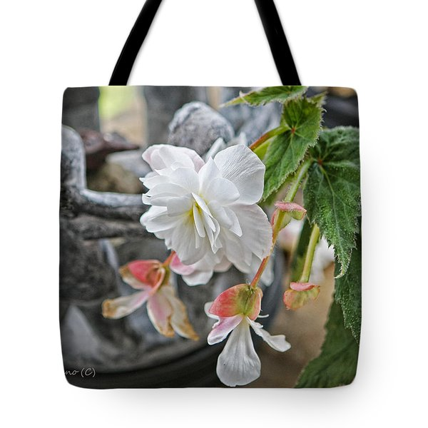 Begonia Tote Bag by Denise Romano