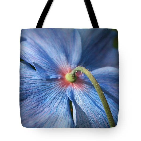 Behind The Blue Poppy Tote Bag by Carol Groenen