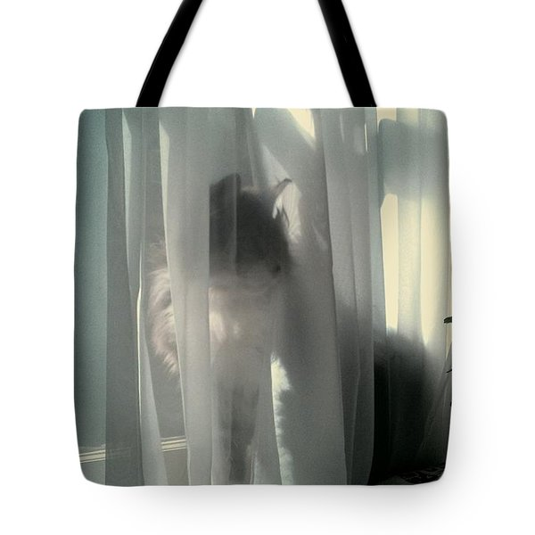 Tote Bag featuring the photograph Behind The Curtain by Jacqueline McReynolds
