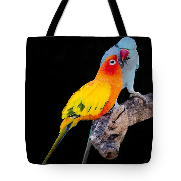 Sun Conure And Ring Neck Parakeet 2 Tote Bag