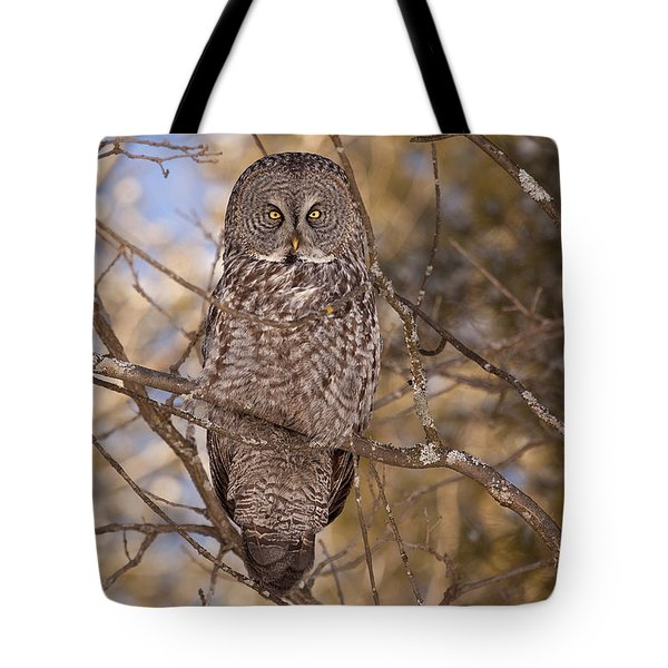 Being Observed Tote Bag