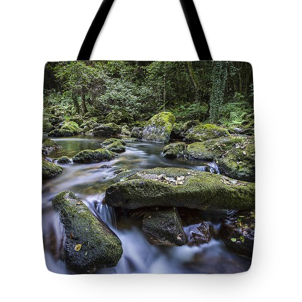 Tote Bag featuring the photograph Belelle River Neda Galicia Spain by Pablo Avanzini
