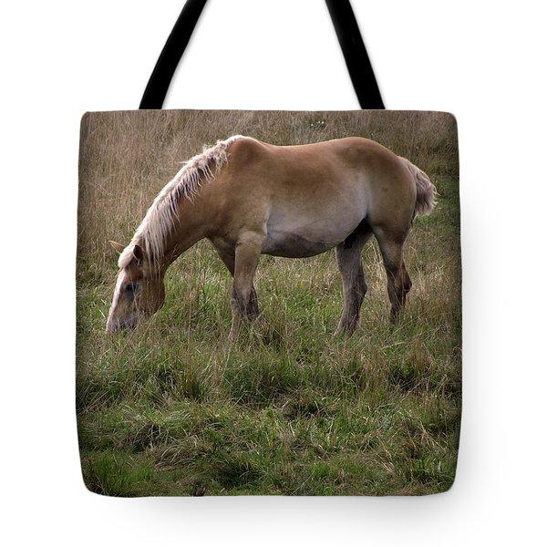 Belgian Draft Horse Tote Bag