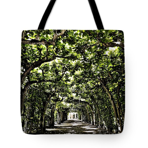Tote Bag featuring the photograph Believes ... by Juergen Weiss