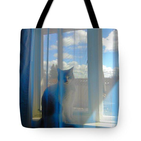 Bella Vista Tote Bag