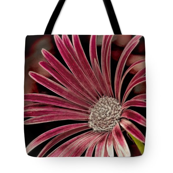 Tote Bag featuring the photograph Belle Of The Ball by Wallaroo Images