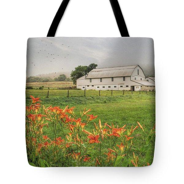 Belleville Morning Tote Bag by Lori Deiter