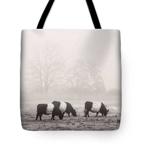 Belted Galloway Cows On Foggy Farm Field In Maine Tote Bag