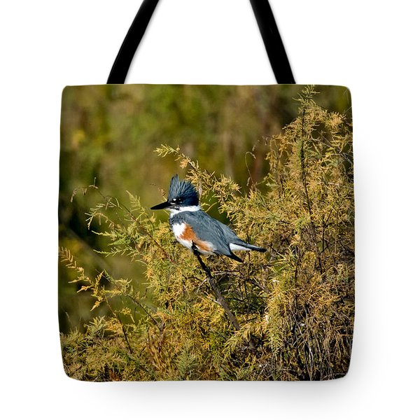 Belted Kingfisher Female Tote Bag by Anthony Mercieca