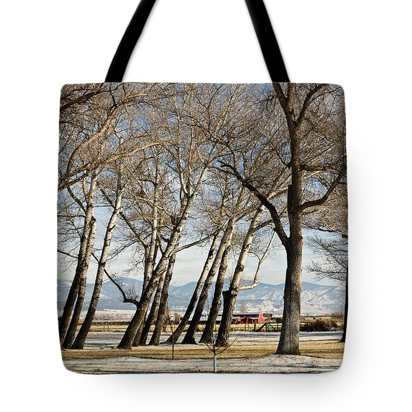 Tote Bag featuring the photograph Bench With A View by Sue Smith