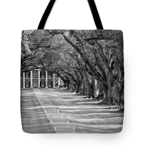Beneath Live Oaks Bw Tote Bag by Steve Harrington